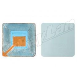 EAS Paper Label BRLSU0601N